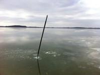 Waconia ice